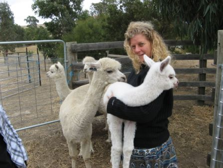 Kristina with one-week-old Alpaca, Australia 2008